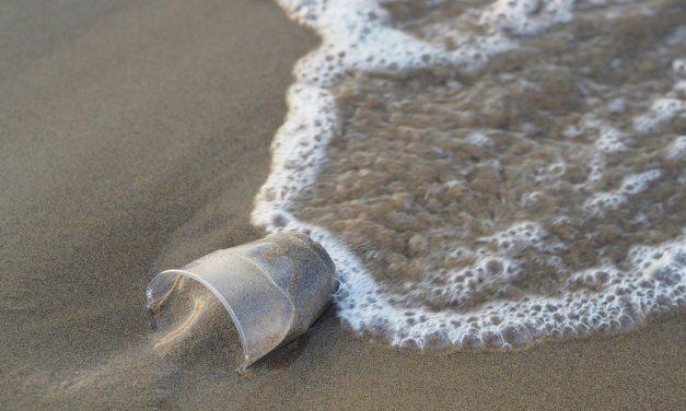Sveprisutni problemi plastike
